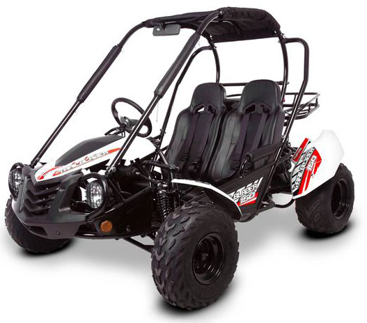 gt 150 buggy main