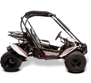 gt buggy side view